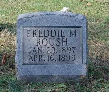 ROUSH, FREDDIE M - Gallia County, Ohio | FREDDIE M ROUSH - Ohio Gravestone Photos