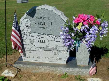 "ROUSH, HARRY C, III ""PEANUT"" - Gallia County, Ohio | HARRY C, III ""PEANUT"" ROUSH - Ohio Gravestone Photos"