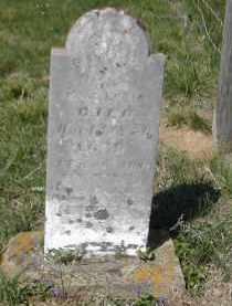 ROUSH, SARAH - Gallia County, Ohio   SARAH ROUSH - Ohio Gravestone Photos