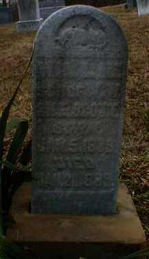 SCOTT, WILLIE - Gallia County, Ohio   WILLIE SCOTT - Ohio Gravestone Photos
