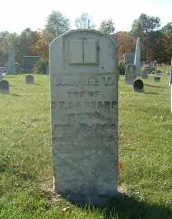 SHARP, DANIEL T - Gallia County, Ohio   DANIEL T SHARP - Ohio Gravestone Photos