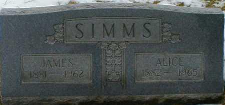 SIMMS, JAMES - Gallia County, Ohio | JAMES SIMMS - Ohio Gravestone Photos