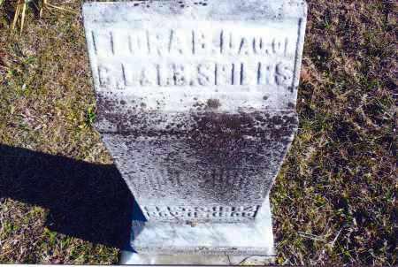 SPIRES, FLORA B. - Gallia County, Ohio | FLORA B. SPIRES - Ohio Gravestone Photos