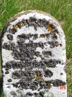 STEPHENS, CATHERINE - Gallia County, Ohio | CATHERINE STEPHENS - Ohio Gravestone Photos