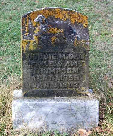 THOMPSON, GOLDIE M - Gallia County, Ohio | GOLDIE M THOMPSON - Ohio Gravestone Photos