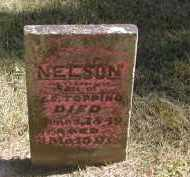 TOPPING, NELSON - Gallia County, Ohio | NELSON TOPPING - Ohio Gravestone Photos