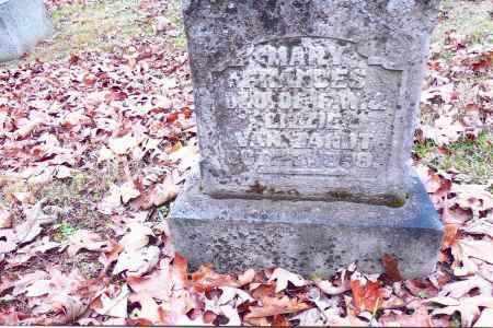 VANZANT, MARY FRANCES - Gallia County, Ohio   MARY FRANCES VANZANT - Ohio Gravestone Photos