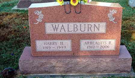 WALBURN, HARRY H - Gallia County, Ohio   HARRY H WALBURN - Ohio Gravestone Photos