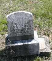 WALTER, ANSEL - Gallia County, Ohio   ANSEL WALTER - Ohio Gravestone Photos