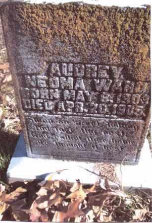 WARD, AUDREY NEOMA - Gallia County, Ohio | AUDREY NEOMA WARD - Ohio Gravestone Photos