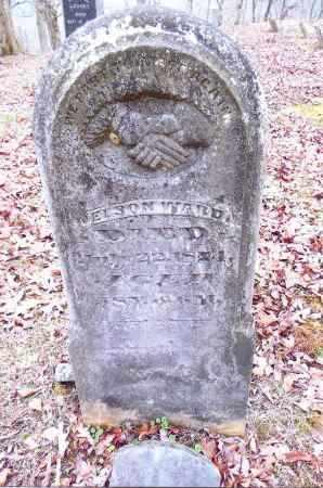 WARD, NELSON - Gallia County, Ohio | NELSON WARD - Ohio Gravestone Photos