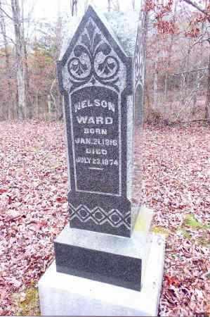 WARD, NELSON - Gallia County, Ohio   NELSON WARD - Ohio Gravestone Photos