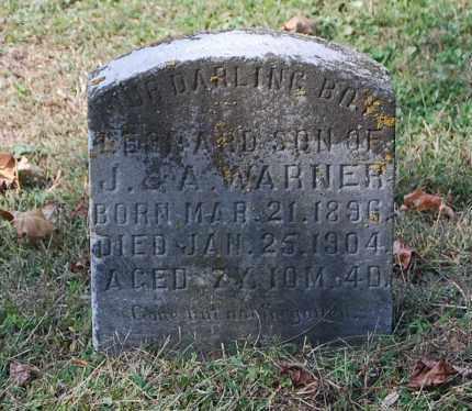 WARNER, LEONARD - Gallia County, Ohio | LEONARD WARNER - Ohio Gravestone Photos