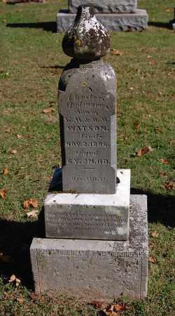 WATSON, CHESTER DELMORE - Gallia County, Ohio   CHESTER DELMORE WATSON - Ohio Gravestone Photos