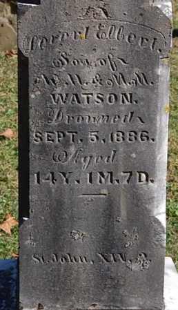 WATSON, LEVERT ELBERT (CLOSE-UP) - Gallia County, Ohio | LEVERT ELBERT (CLOSE-UP) WATSON - Ohio Gravestone Photos