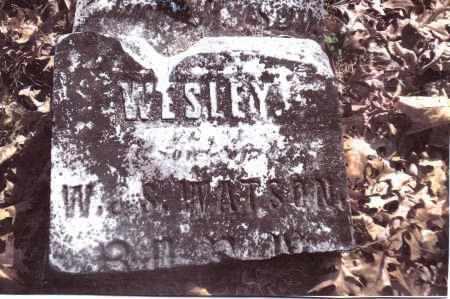 WATSON, WESLEY - Gallia County, Ohio   WESLEY WATSON - Ohio Gravestone Photos