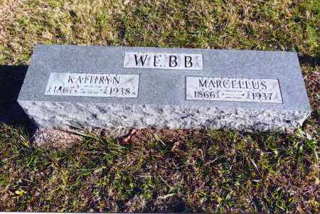 WEBB, MARCELLUS - Gallia County, Ohio | MARCELLUS WEBB - Ohio Gravestone Photos