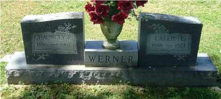 WERNER, CALLIE L - Gallia County, Ohio   CALLIE L WERNER - Ohio Gravestone Photos