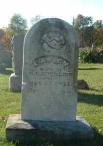 WRIGHT WICKLINE, LAVICY - Gallia County, Ohio | LAVICY WRIGHT WICKLINE - Ohio Gravestone Photos