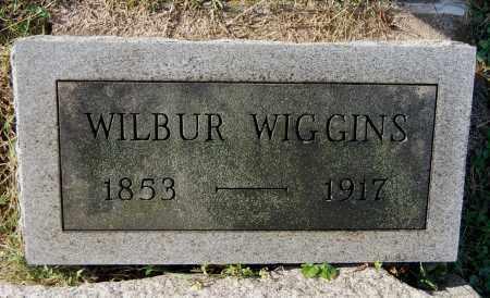 WIGGINS, WILBUR - Gallia County, Ohio | WILBUR WIGGINS - Ohio Gravestone Photos