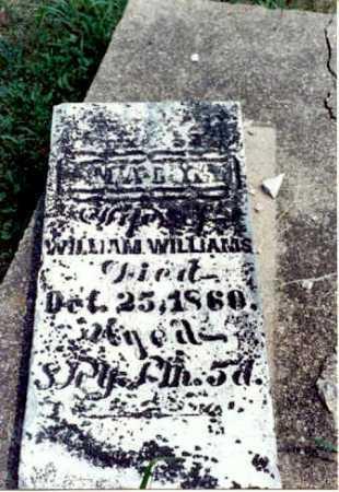 WILLIAMS, MARY - Gallia County, Ohio | MARY WILLIAMS - Ohio Gravestone Photos