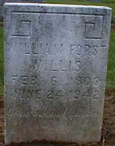 WILLIS, WILLIAM - Gallia County, Ohio   WILLIAM WILLIS - Ohio Gravestone Photos