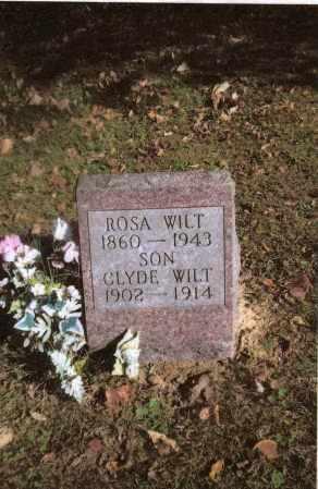WILT, CLYDE - Gallia County, Ohio | CLYDE WILT - Ohio Gravestone Photos