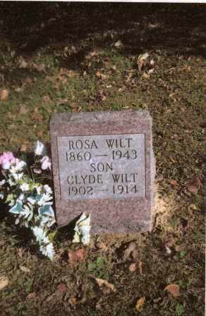 WILT, ROSA - Gallia County, Ohio | ROSA WILT - Ohio Gravestone Photos