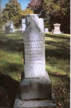 WINEGAR, CHARLES - Gallia County, Ohio | CHARLES WINEGAR - Ohio Gravestone Photos