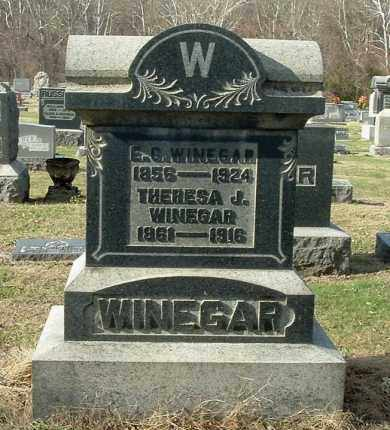 WINEGAR, THERESA J - Gallia County, Ohio   THERESA J WINEGAR - Ohio Gravestone Photos