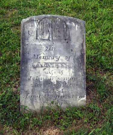 NEAL WISEMAN, AGNESS - Gallia County, Ohio | AGNESS NEAL WISEMAN - Ohio Gravestone Photos