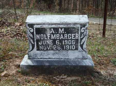 WOLFENBARGER, ALICE M. - Gallia County, Ohio | ALICE M. WOLFENBARGER - Ohio Gravestone Photos