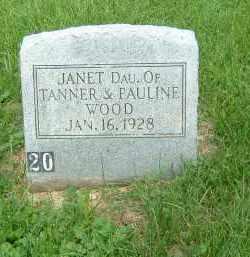 WOOD, JANET - Gallia County, Ohio | JANET WOOD - Ohio Gravestone Photos