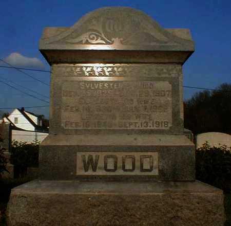 WOOD, LUCRETIA - Gallia County, Ohio | LUCRETIA WOOD - Ohio Gravestone Photos