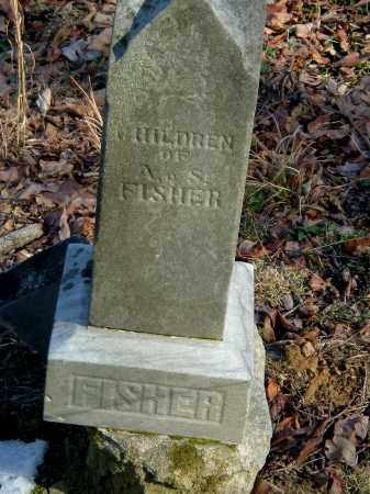 FISHER, CHILDREN OF - Gallia County, Ohio | CHILDREN OF FISHER - Ohio Gravestone Photos