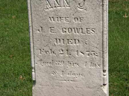COWLES, ANN J. - Geauga County, Ohio | ANN J. COWLES - Ohio Gravestone Photos