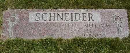 SCHNEIDER, WILBERT F. - Geauga County, Ohio | WILBERT F. SCHNEIDER - Ohio Gravestone Photos