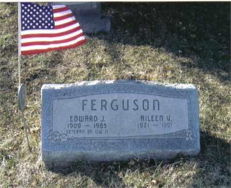 FERGUSON, EDWARD - Greene County, Ohio | EDWARD FERGUSON - Ohio Gravestone Photos