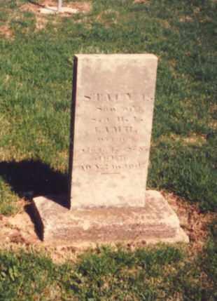 LAMB, STACY C. - Greene County, Ohio | STACY C. LAMB - Ohio Gravestone Photos