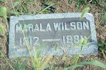 WILSON, MAHALA - Greene County, Ohio   MAHALA WILSON - Ohio Gravestone Photos