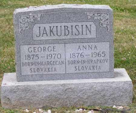 JACKUBISIN, ANNA - Guernsey County, Ohio | ANNA JACKUBISIN - Ohio Gravestone Photos