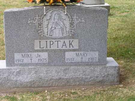 LIPTAK, MARY - Guernsey County, Ohio   MARY LIPTAK - Ohio Gravestone Photos