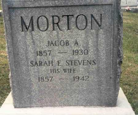 MORTON, JACOB A.. - Guernsey County, Ohio | JACOB A.. MORTON - Ohio Gravestone Photos