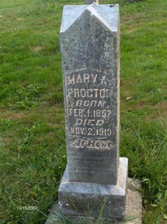 PROCTOR, MARY ANN - Guernsey County, Ohio | MARY ANN PROCTOR - Ohio Gravestone Photos