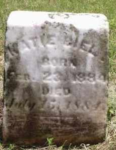 BIEL, KATIE - Hamilton County, Ohio   KATIE BIEL - Ohio Gravestone Photos