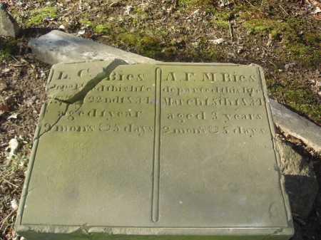 BIES, L. C. - Hamilton County, Ohio | L. C. BIES - Ohio Gravestone Photos