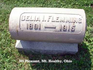 FLEMMING, CELIA - Hamilton County, Ohio | CELIA FLEMMING - Ohio Gravestone Photos