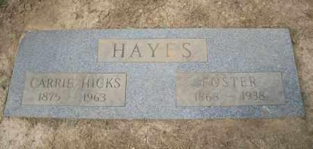 HICKS HAYES, CARRIE - Hamilton County, Ohio | CARRIE HICKS HAYES - Ohio Gravestone Photos