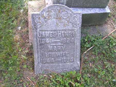 HENRY, MARY - Hamilton County, Ohio | MARY HENRY - Ohio Gravestone Photos