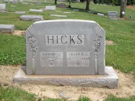 HICKS, FANNIE - Hamilton County, Ohio | FANNIE HICKS - Ohio Gravestone Photos